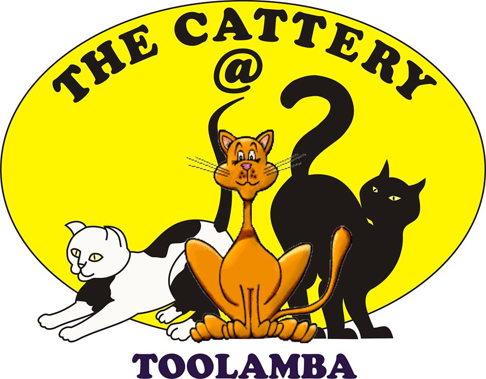 THE CATTERY @ TOOLAMBA